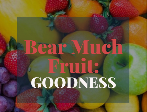 Bear Much Fruit By the Spirit of God – Goodness