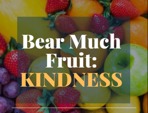 Bear Much Fruit By the Spirit of God – Kindness
