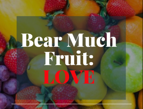 Bear much fruit by the Spirit of God – Love