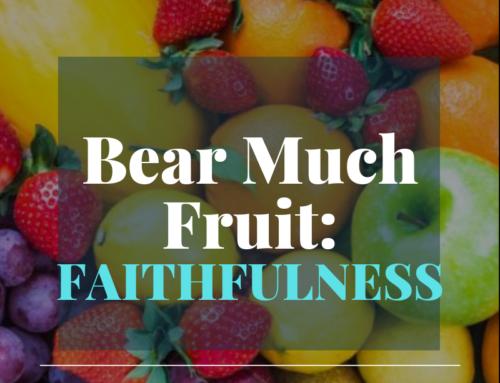 Bear Much Fruit By the Spirit of God – Faithfulness