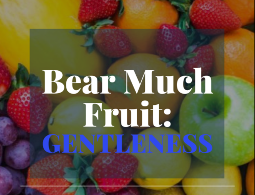 Bear Much Fruit By the Spirit of God – Gentleness