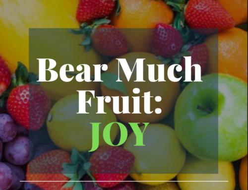 Bear Much Fruit By the Spirit of God – Joy