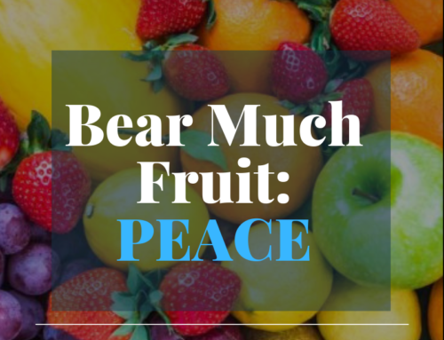Bear Much Fruit By the Spirit of God – Peace