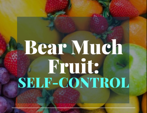 Bear Much Fruit By the Spirit of God – Self Control